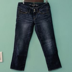 American Eagle Cropped Artist Jeans sz 4